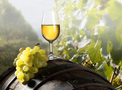 Spanische Weine – Wissenswertes